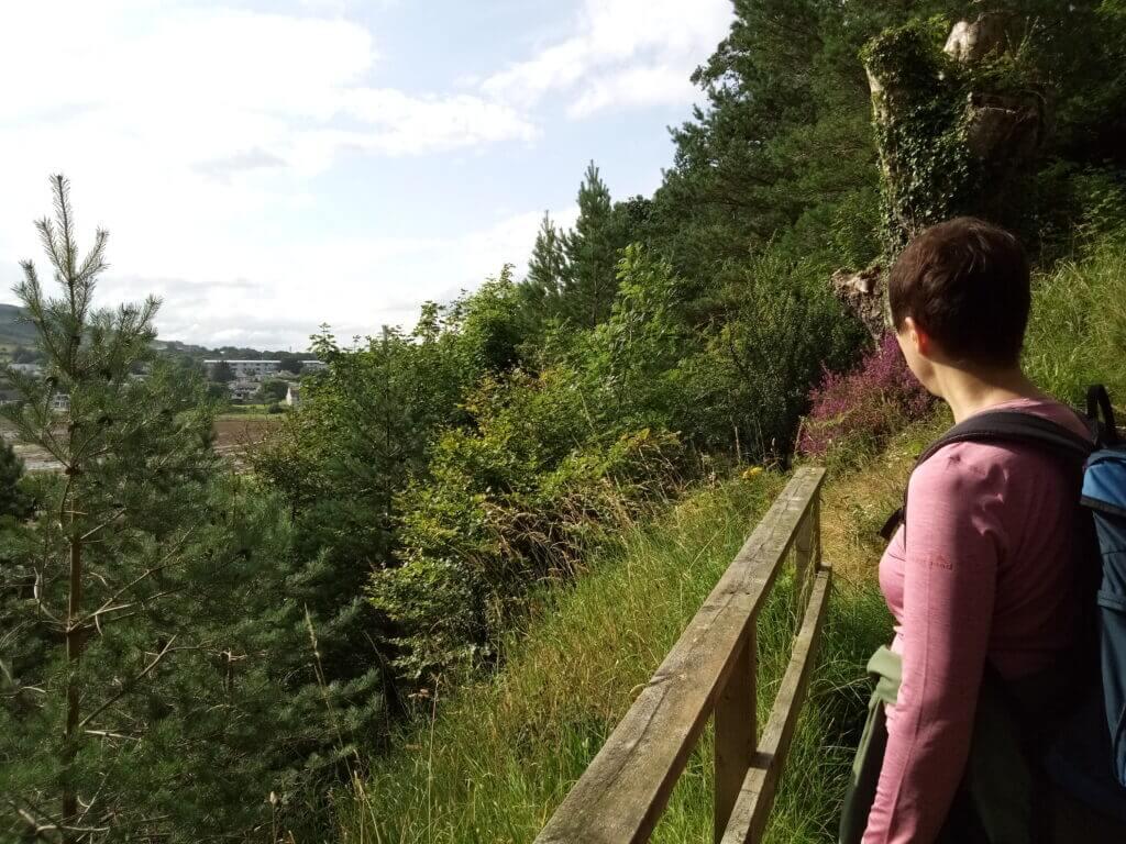 Betrachten der Landschaft